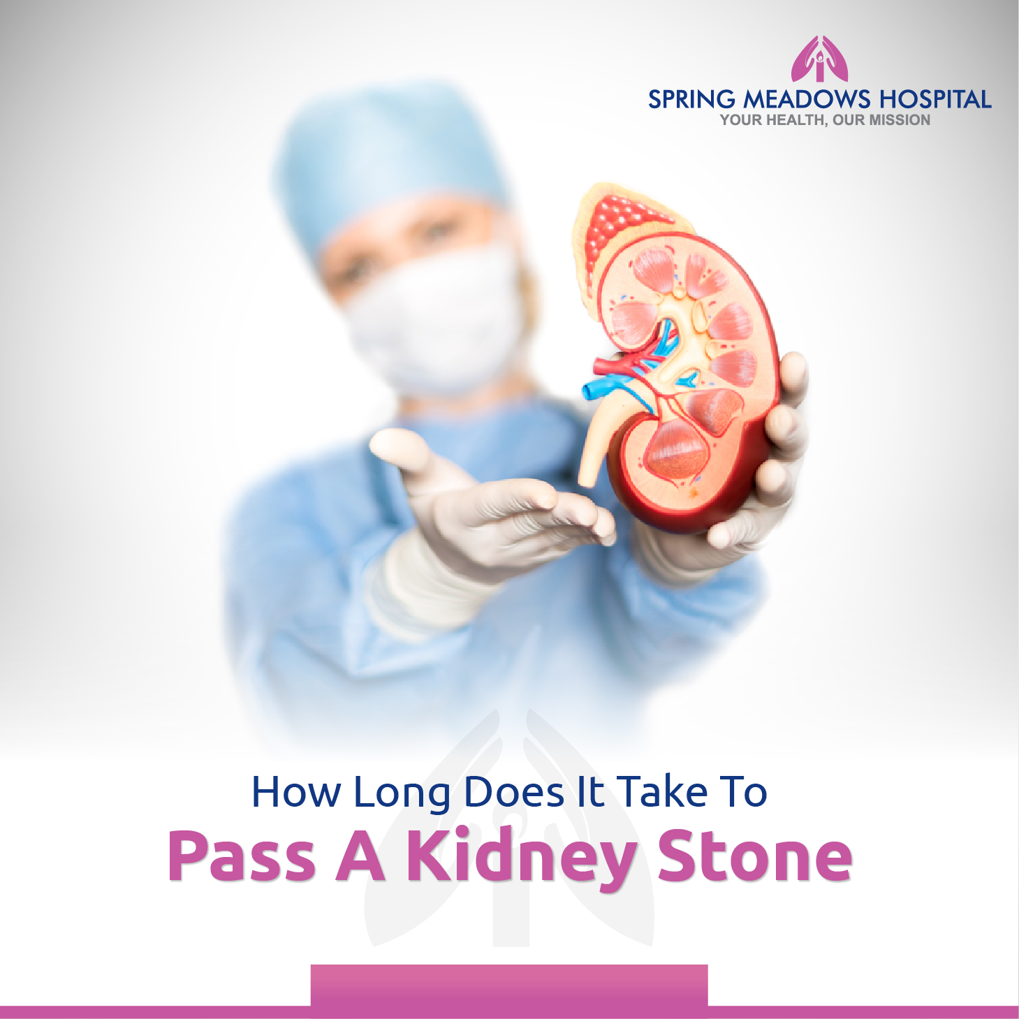 How Long Does It Take To Pass A Kidney Stone Spring Meadows Hospital